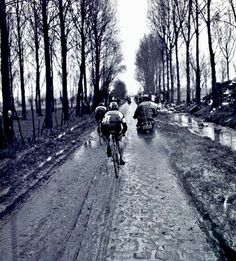 The nice & muddy 1970 P-R. Merckx is well out in front from his frustrated rivals. From: Paris-R. Paris Roubaix, Cycling Tips, Cycling Art, Vintage Cycles, Bicycle Race, Vintage Paris, Road Bikes, Travel Light, Racing