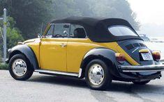 1977 Vw Beetle Convertible
