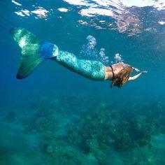 Mermaid life  #hmammaui
