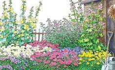 Bunt und sommerlich gestaltet wie von Großmutter: Das Bauerngarten-Beet