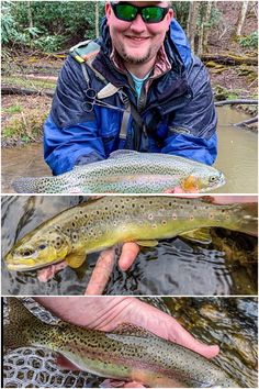 Catching trout is not difficult once you realize how to put .-Catching trout is not difficult once you realize how to put in a few basic princ… Catching trout is not difficult once you realize how to put in a few basic principles. Lake Trout Fishing, Trout Fishing Tips, Bass Fishing, Fish Bites, The Bait, Famous Last Words, Image, Ideas, Thoughts
