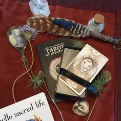 We have our new The Wild Unknown #tarot #books and #clothing goods in stock! We may be the only shop in Eugene to carry these.  #thewildunknown - - - #kəvən #keven #ritual #rituals #apothecary #artisanal #lunarcycle #organic #herbal #homemade #herb #nature #madeinoregon #gifts #madeineugene #local #fineart #custom #eugene #Whiteaker #maker #buylocal #smugde #sage #wildunknown