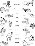 Ask A Biologist, Coloring Page, Biome Map Worksheet