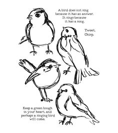 Ranger Dina Wakley Media Scribbly Birds Cling Stamps