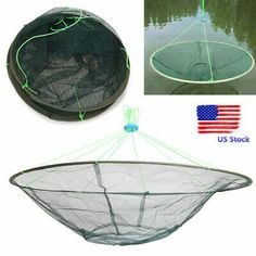 And doubles as a prawn catcher when baited. Also makes a great drop landing net. Vertically pull this network as much as possible, and far better than perpendicular to the shore about - 1 m for easy fishing. Crab Stuffed Shrimp, Fishing Equipment, Prawn, Fishing Lures, Bait, Landing, Pond, Drop, Usa