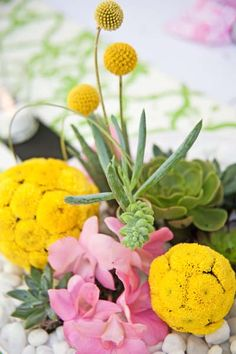 Yellow billy balls, succulents & orchids for a modern Palm Springs centerpiece www.alchemyfineevents.com