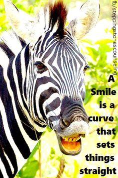 #zebra #humor #funny #smile #positive #laugh #inspirational #motivational http://www.facebook.com/steppingstonescounseling