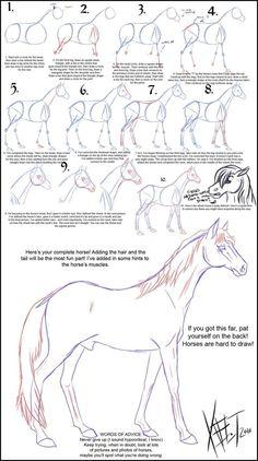 Goed uitleg over het teken van een paard.