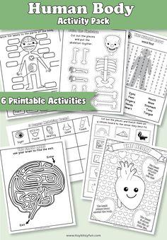 Human Body Worksheets - Itsy Bitsy Fun