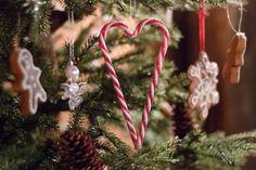 Rovaniemi: The Ultimate Family Christmas Lapland, Finland