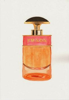 watercolor perfume bottle paintings and illustrations