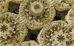 3D Fractals in Motion: Meet the Animated Mandelbulb
