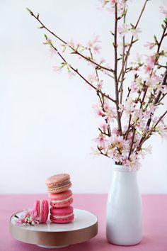 Shades of pink macarons