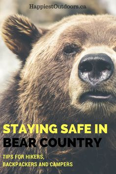 Staying safe in bear country. Bear safety tips for hikers, backpackers and campers. Bear safety for hiking, backpacking and camping.