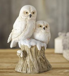 Use our Snowy Owls On Stump Sculpture to bring the beautiful winter landscape indoors. Clay Owl, Harry Potter, Yellow Eyes, Snowy Owl, Owl Art, Winter Landscape, Wood Carving, Sculptures, Cute Animals