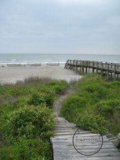 Folly Beach Photo Gallery