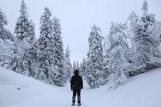Things to Do in Ruka and Kuusamo in Winter