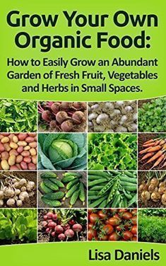Grow your Own Organic Food: How to Easily Grow an Abundant Garden of Fresh Fruit, Vegetables and Herbs in Small Spaces: A Green Thumbs Guide to an Organic Food Producing Garden - http://goodvibeorganics.com/grow-your-own-organic-food-how-to-easily-grow-an-abundant-garden-of-fresh-fruit-vegetables-and-herbs-in-small-spaces-a-green-thumbs-guide-to-an-organic-food-producing-garden/ #Howtogrowvegetablesinyourowngarden #fruitgarden #organicgardenhowto
