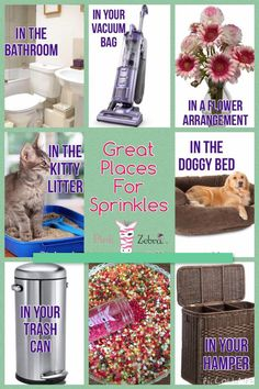 Uses for sprinkles