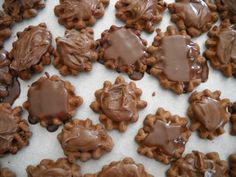 Chocolate waffle cookies. They are absolutely amazing!
