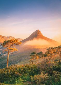 The 12 Best Hikes In South Africa You Have To ExperienceYou can find South africa and more on our website.The 12 Best Hikes In South Africa You Have To Experience Travel Photography Tumblr, Photography Beach, Cape Town Photography, Food Photography, Visit South Africa, Cape Town South Africa, South Africa Safari, East Africa, Oh The Places You'll Go