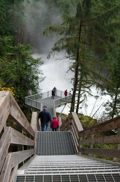7 Places to Chase Waterfalls on Vancouver Island - Elk Falls, Vancouver Island has an incredible suspension bridge and viewing platform Vancouver Island, Vancouver Travel, British Columbia, Landscape Photography, Travel Photography, Vancouver Photography, Water Photography, Wildlife Photography, Naturaleza