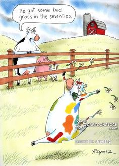 Reynolds: He got some bad grass in the seventies. Far Side Cartoons, Far Side Comics, Funny Cartoons, Funny Comics, Cartoon Cow, Cartoon Games, Wtf Funny, Funny Jokes, Funny Shit