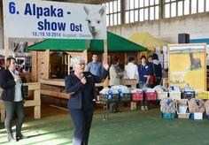 Alpaca Show Ost 2014, Burgstädt