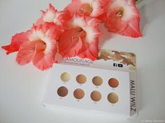 Shape Artistic by Malu Wilz  Camouflage Cream Professional Sample Kit
