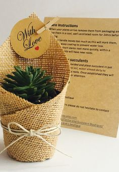 Best 11 Succulent Favors Wrapped in Hessian. Sweet Wedding Favors, Wedding Favor Table, Homemade Wedding Favors, Wedding Gifts, Wedding Ideas, Wedding Cakes, Wedding Advice, Wedding Invitations, Baby Favors