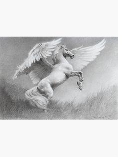 PEGASUS/Pegasos - an immortal, winged horse Pegasus Tattoo, Greek Mythology Tattoos, Winged Horse, Mythological Creatures, Equine Art, Magical Creatures, Horse Art, Animal Drawings, Fantasy Art