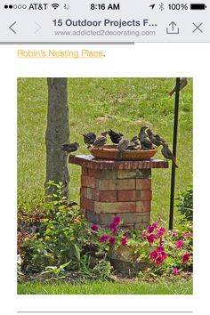 I was wondering what to do with the brick that the former owners left.  I will have to build it higher so the little birdies don't become a meal.