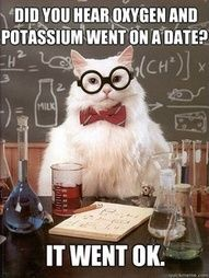 "chemistry cat"" data-componentType=""MODAL_PIN"