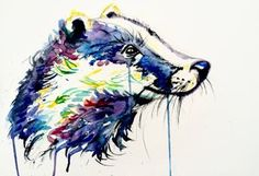 Bright Badger