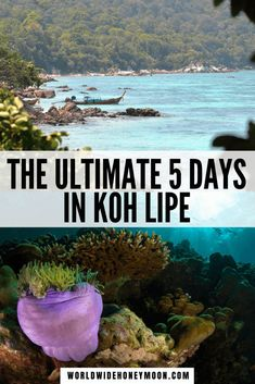 The ultimate Koh Lipe Guide includes the perfect Koh Lipe itinerary for 5 days, how to get to Koh Lipe (including the Langkawi to Koh Lipe ferry), and more! Thailand Beach Resorts, Thailand Destinations, Thailand Honeymoon, Thailand Travel, Asia Travel, Travel Usa, Beach Vacations, Travel Destinations, Koh Lipe