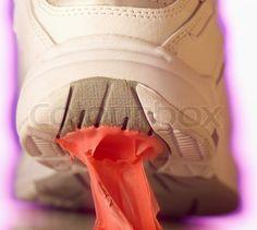 Google Image Result for http://www.colourbox.com/preview/2911356-682703-close-up-of-gum-stuck-to-a-canvas-shoe.jpg