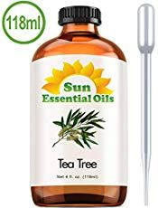 Pure Rosemary Essential Oil oz) for Therapeutic Aromatherapy Stimulating Scalp Treatment for Healthy Hair Growth Anti Aging Antioxidant Ancient Beauty Elixir Natural Skin Care for Acne Diy Foundation, Natural Foundation, Essential Oils For Migraines, Pimples Overnight, Beauty Elixir, Baking Soda Shampoo, Spot Treatment, Acne Treatment, Healthy Hair Growth