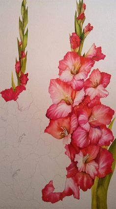 Anneli Rani-Lassi painting class from Botanical Art for Beginners facebook page.