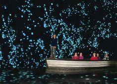 Waitomo, New Zealand is famous for one thing. Every year, heaps upon heaps of travelers come here to see the infamous glow worms that line the ceilings of the nearby caves.