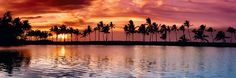 Limited Edition Fine Art Photograph by Peter Lik. Landscape photo of the sun setting behind palm tree silhouettes and a cove on The Big Island, Hawaii. Peter Lik Photography, Pool Dance, Landscape Photography, Nature Photography, Facebook Cover Images, Romantic Scenes, Big Island Hawaii, Tree Silhouette, Ocean Beach