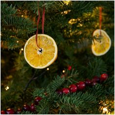 orange slice christmas ornaments~