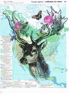 For you ...DEERButterflies.Colourful.Collage.Map Page by studioflowerpower, $8.50