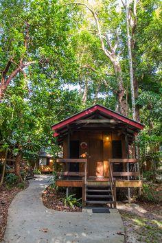 Want to sleep in the world heritage listed Daintree Rainforest of Australia Australia Tours, Australia Travel, Queensland Australia, Treehouse Cabins, Daintree Rainforest, Stay Overnight, Amazing Buildings, Vacation Places, Beautiful Architecture