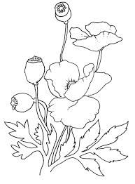 free printable line art of poppies - Google Search