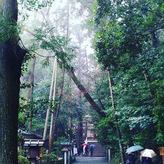 奈良の三輪神社へ途中まで雨やったけど帰りはやんだ!. 願い事が届いてほしい(). . 日本の景色や日本らしい和をテーマとした写真 . . ハッシュタグ  #写真好きな人と繋がりたい.  #写真撮ってる人と繋がりたい.  #カメラ好きな人と繋がりたい.  #ファインダー越しの私の世界.  #フォロー #写真部 #関西写真部.  #instagood #photooftheday #happy.  #tagsforlikes #followme #instafollo.  #follow4follow #webstagram #like4like.  #instadaily #instalike #likeforlike.  #life #follow #tagsforlikes #l4l. . コンテストタグ #JAL東京カメラ部2017JAPAN.