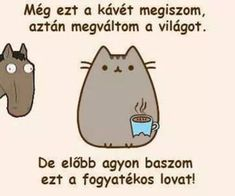 Pusheen on We Heart It Pusheen Cat, Grumpy Cat, Funny Memes, Jokes, Drugs, We Heart It, I Am Awesome, Lol, Comics