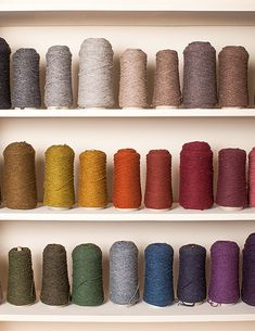 "Jared Flood, the founder of the yarn and knitwear company Brooklyn Tweed. ""My wall of Loft yarn — a cone of each of the 32 colors in our palette. I use this as my ""paintbox"" when putting together color stories for collections or combining colors within a design."""