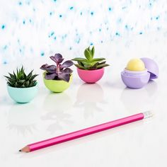 Empty EOS Lip Balm. Perfect little planter for the desk! Fun colors and doesn't take up a lot of space. Plus low maintenance plants.