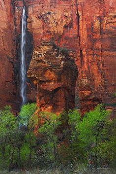 Zion National Park – Temple Of Sinawava Waterfall - Scenic Utah Zion Park, Zion National Park, Arches Nationalpark, Yellowstone Nationalpark, Oh The Places You'll Go, Places To Travel, Places To Visit, North Cascades, Great Smoky Mountains