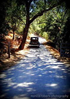 heading home off Hwy. 41, San Luis Obispo County, Atascadero California USA